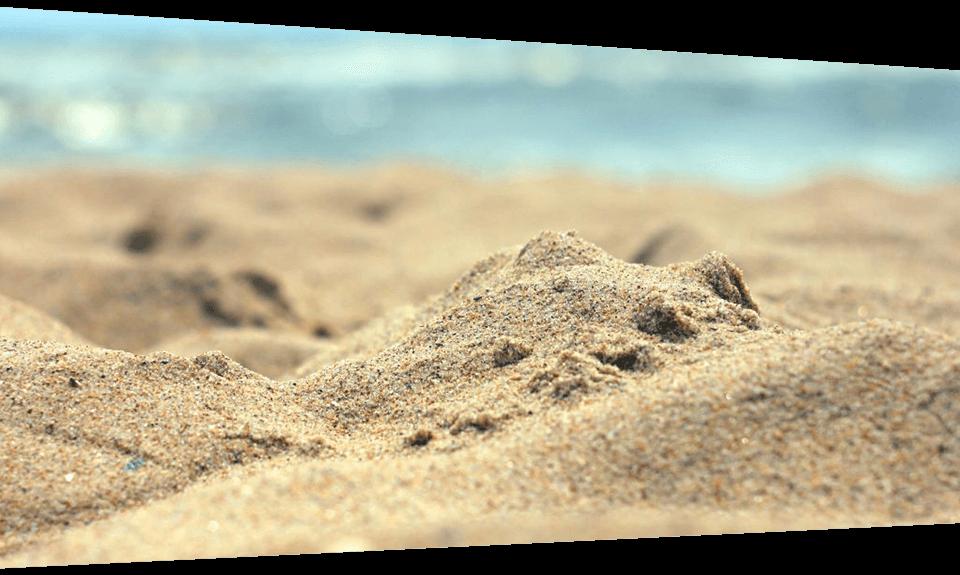 tip-tortiricas-playas